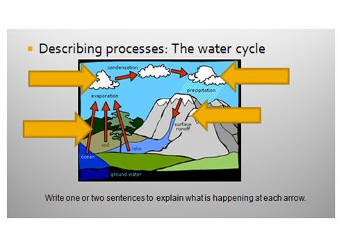 The Water Cycle | Free Essay Example